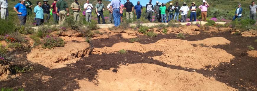 Land Restoration Farmers Day 23 September 2015