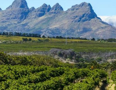 Annual Winelands Training Day -10 March 2016 TRAINING DAY